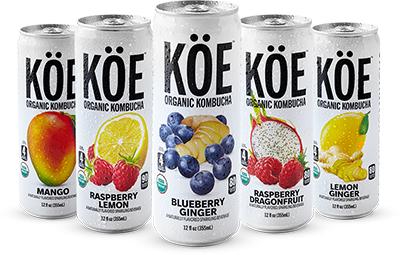 FREE Can of Koe Organic Kombucha